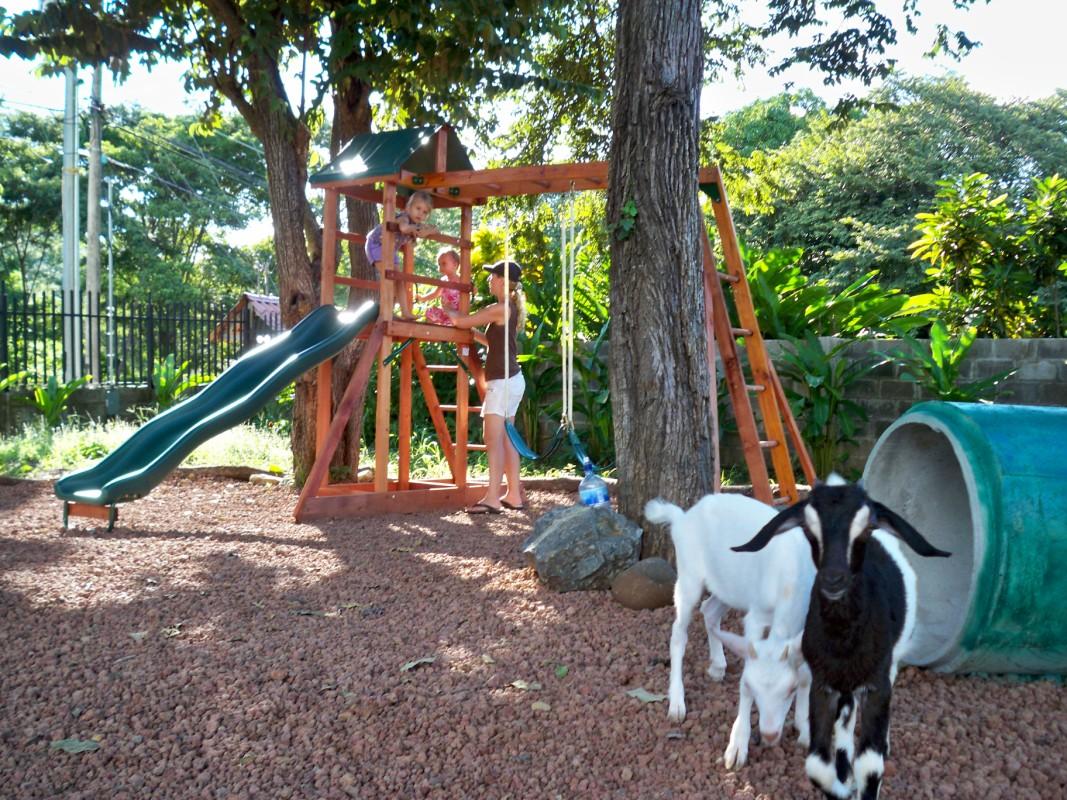 Green Life Academy Goats